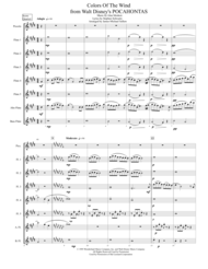 Colors Of The Wind (for Expandable Flute Choir) Sheet Music by Vanessa Williams