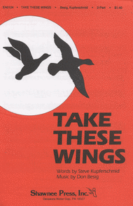 Take These Wings 2-part/Flute Sheet Music by Don Besig