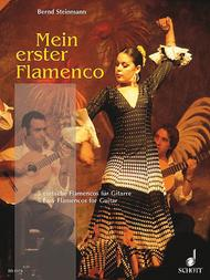 My first Flamenco Sheet Music by Bernd Steinmann